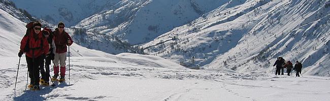 Niveau à raquettes à neige
