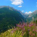 Vallée glaciaire du Fournel