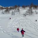 Ski de Rando - Val Germanasca - Prali