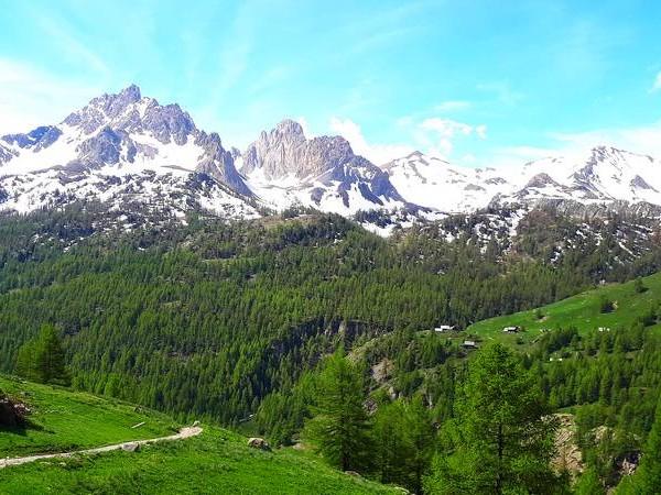 Alpages et forêts verdoyants, sommets enneigés  - Vallée de la Clarée