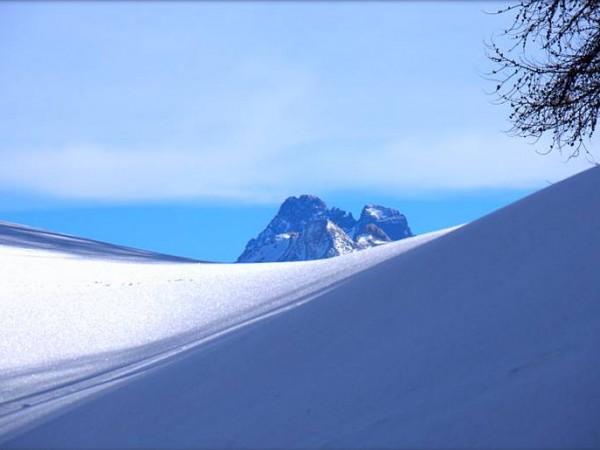Mont Viso depuis le sommet Bucher - Raquettes en Queyras