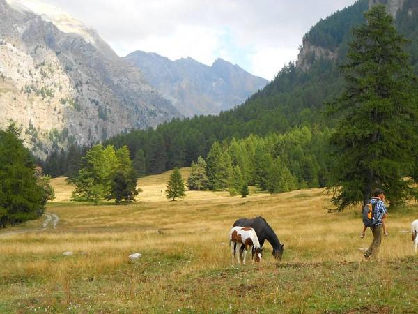 Val d'Escreins - Tour de la Font Sancte