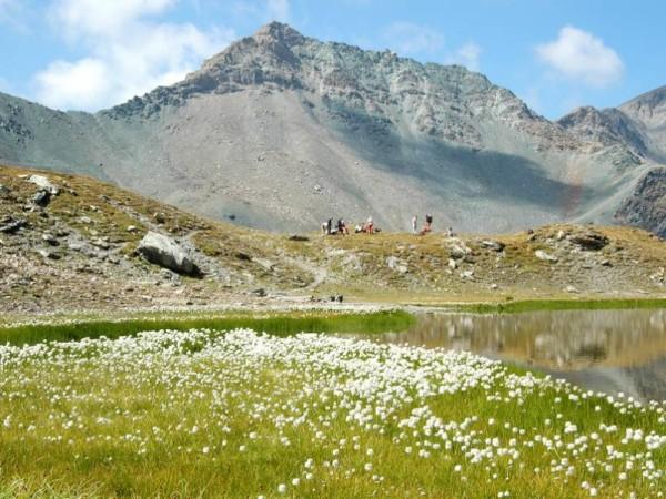 Lac de la Blanche et Col Blanchet -Trek des 3000 du Queyras (GR58)