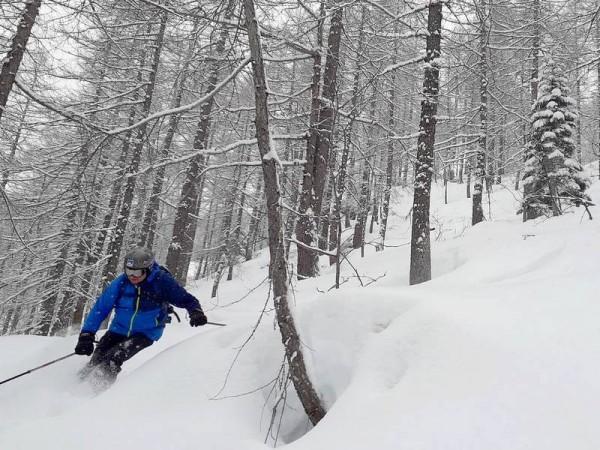 Descente dans la neige poudreuse dans le Queyras