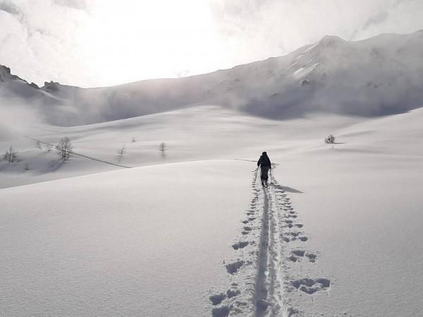 trace dans neige vierge