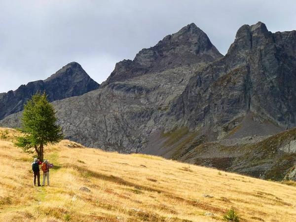 Alpages Haut Val Stura