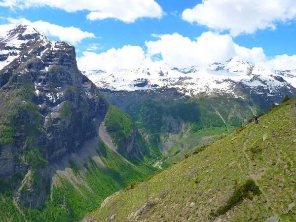 Alpage d'Odeyer fin juin - Parc National des Ecrins