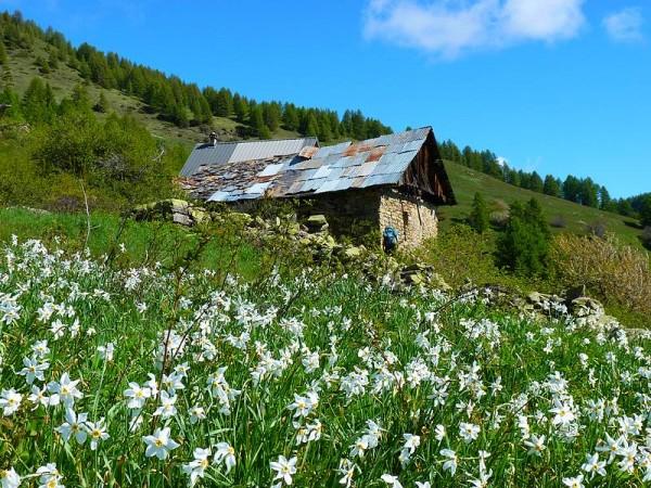 Chalets Alpages - Parc National des Ecrins