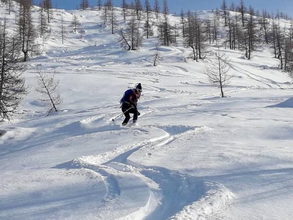 ski entre les mélèzes à prali
