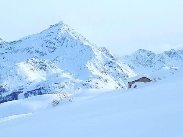 Alpe Piano dei Cavalli