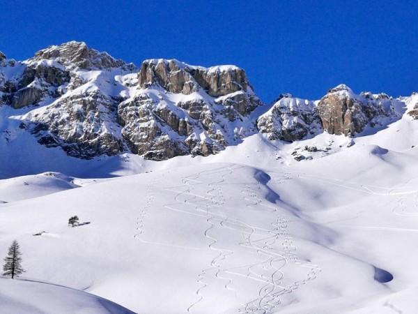 Alpages d'Izoard