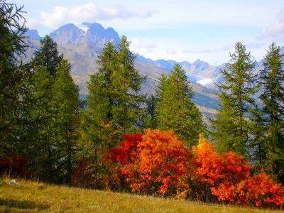 vue sur le Pelvoux depuis le Col de la Pousterle