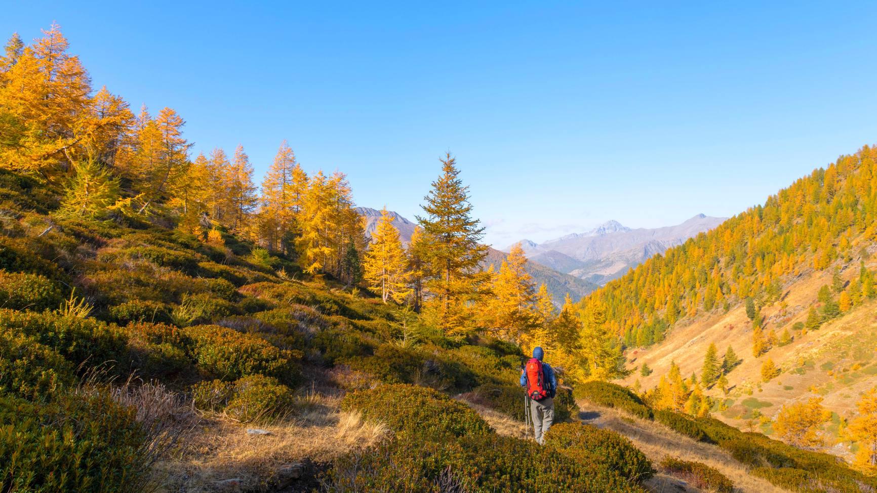 Randonnées en Queyras - Eté ou Hiver